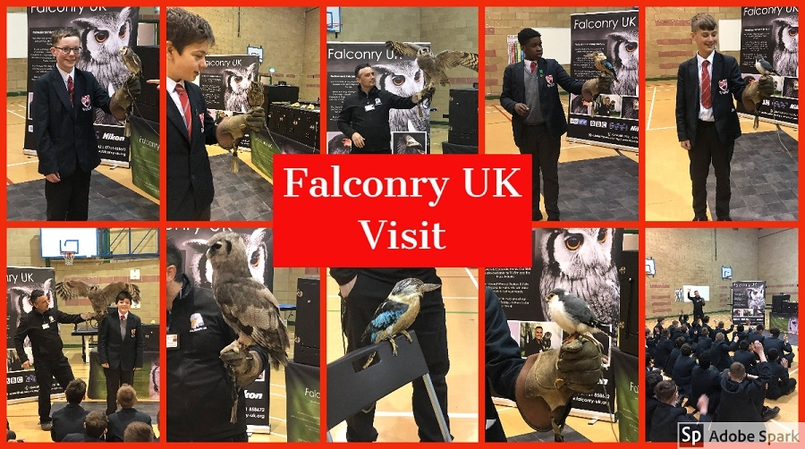Year 8 'Birds Of Prey' experience from Falconry UK.
